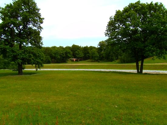 Parkansicht im Fürst Pückler Park